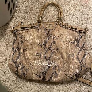 Coach snake skin purse